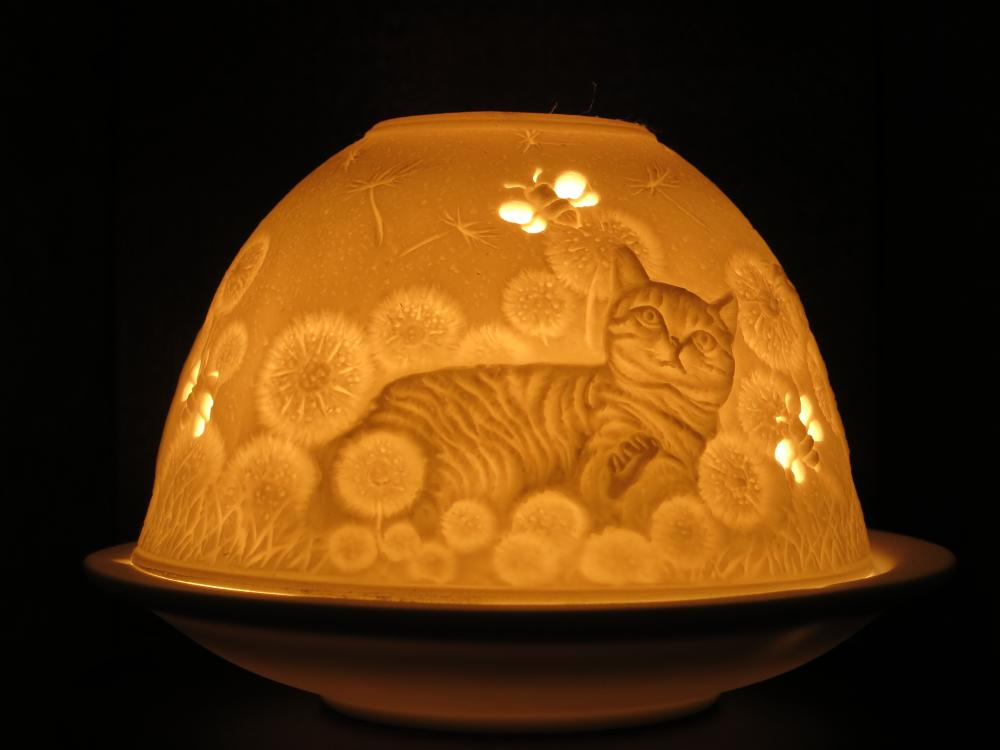 Dome Light Windlicht 30171, Hauskatzen