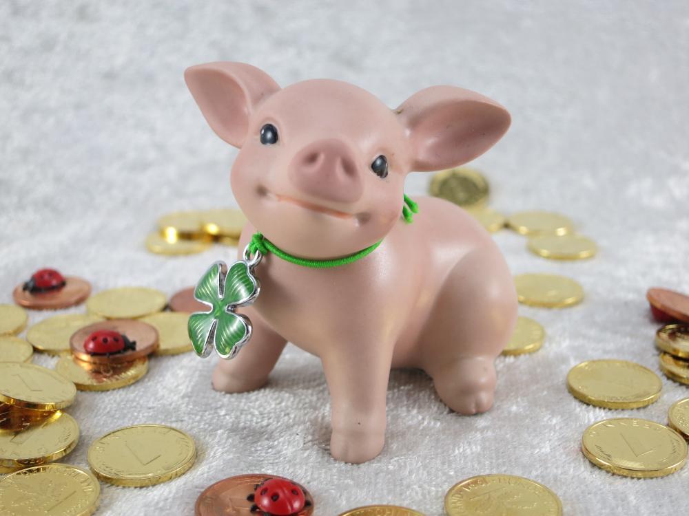 Glückschwein